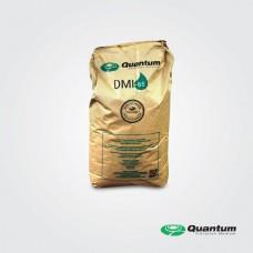 QUANTUM (DMI-65)